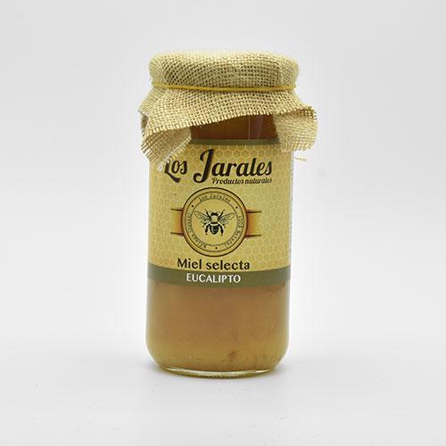 Miel de Eucalipto de 1 kilo
