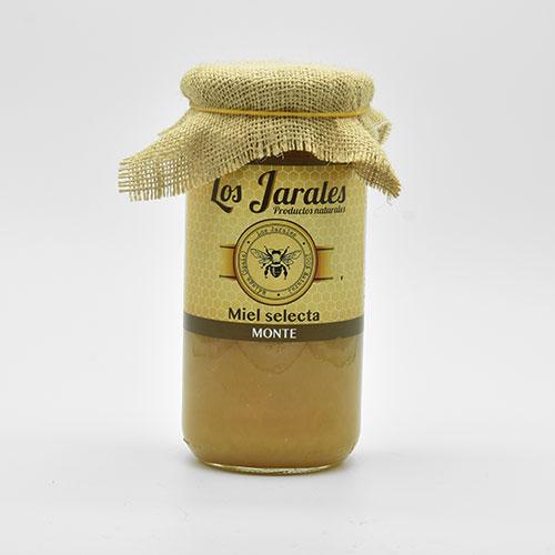 Miel de Monte de 1 kilo